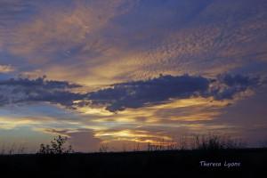 Sunset Tour Louisiana